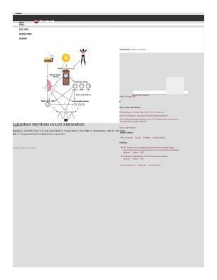 Lifescitrc search results bastiaan du pre university medical center utrecht diagram digital presentation powerpoint image journal articleissue web page html toneelgroepblik Gallery